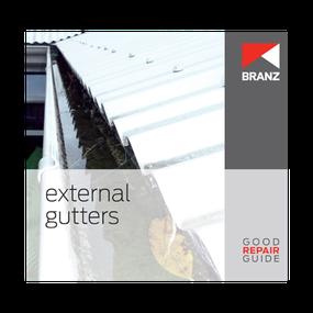 Good Repair Guide: External gutters