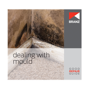 Good Repair Guide: Dealing with mould