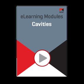 Module: Cavities