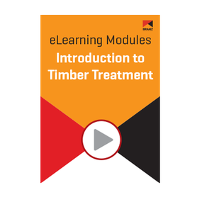 Module: Introduction to timber treatment